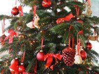 Juletræ, Foto: ABW.