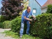 Havearbejde kan være farligt, foto: GF forsikring