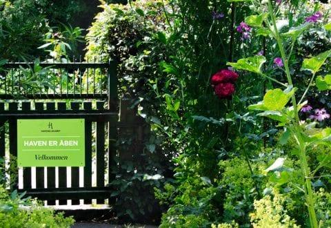 Åben Have, foto: Haveselskabet