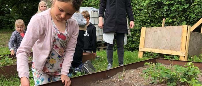 Børn forvandler tre kilo frø til blomsterflor